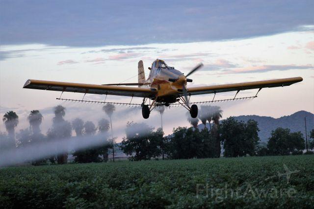 Grumman Tr2 (N30958) - Crop dusting cotton in the field next to Pegasus Airpark 5AZ3