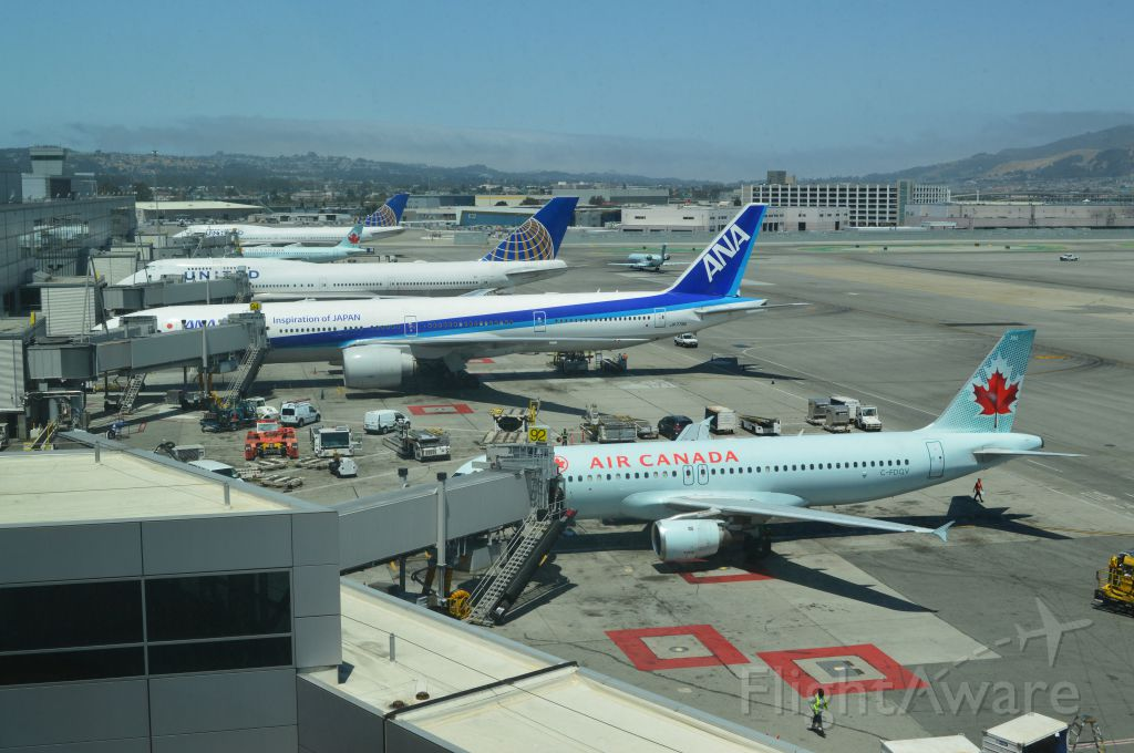 Airbus A320 (C-FDQV) - Taken from United International Lounge. Noon time international traffic at Terminal I-G at SFO.