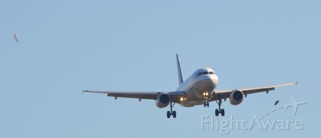 Airbus A319 (N851UA) - Birds watching a short bus coming in 27 at KIAH