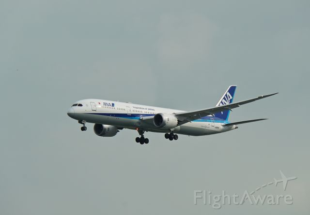 Boeing 787-8 (JA887A) - Arrival into WSSS
