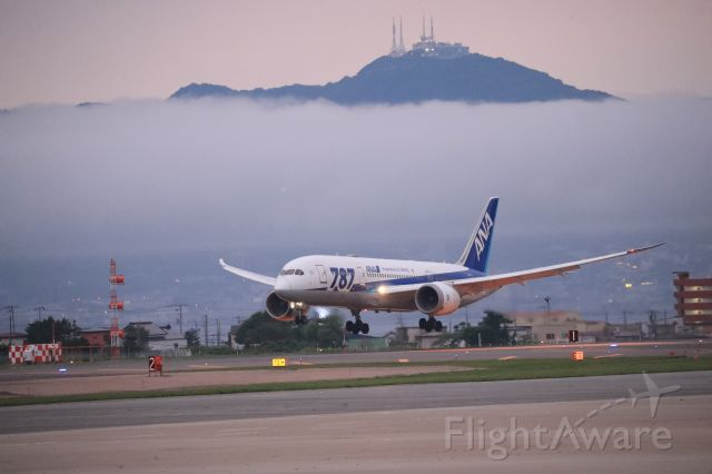 Boeing 787-8 (JA817A) - July 18th 2019:HND-HKD.