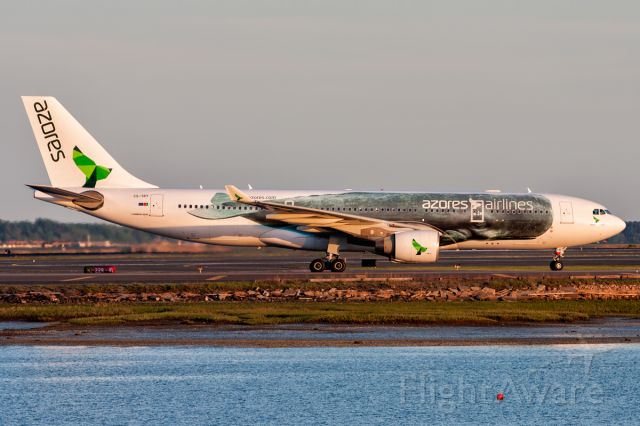 Airbus A330 (CS-TRY)