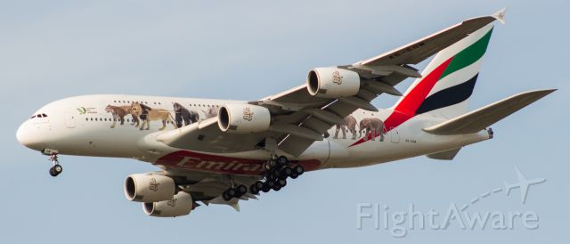 Airbus A380-800 (A6-EOM) - Finally get #Emirates #UnitedForWildlife livery! I wasn't going to be able to make it out to the airport in time so I pulled into the parking lot of the high school and #BAM it was right on me!