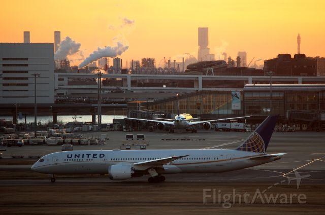 Boeing 787-9 Dreamliner (N26960)