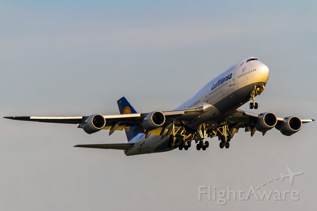 BOEING 747-8 (D-ABYC) - hot evening sun