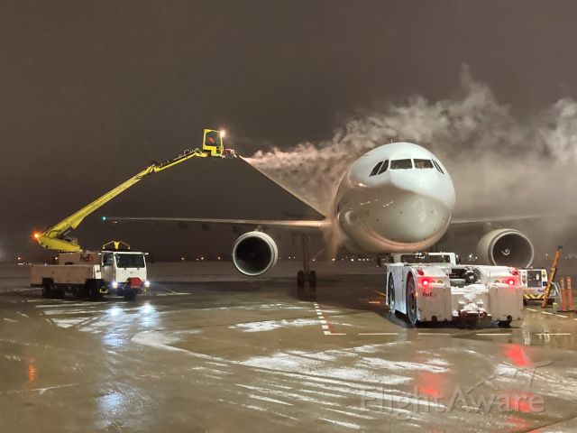 """Airbus A300F4-600 (N651FE) - Forward fuselage of """"Whitney"""" getting the Type 1 Deice Treatment of hot water & propylene glycol 8:30 pm January 4th."""