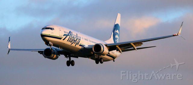 Boeing 737-700 (N483AS) - Arrival From SJD, Landing 30L  01-01-2017