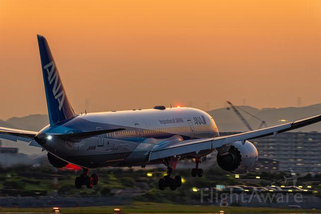 Boeing Dreamliner (Srs.8) (JA816A)
