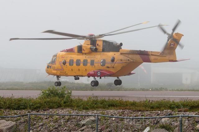 WESTLAND Merlin (14-9901)