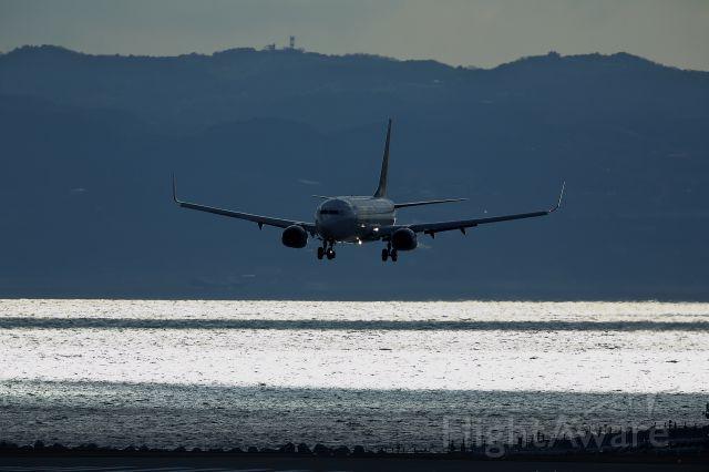 Boeing 737-800 (JA737T)