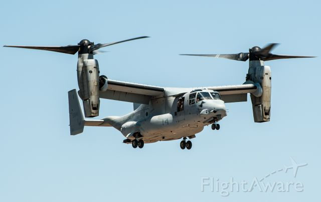 Bell V-22 Osprey (VMM365) - It is not every day you get to see one of these up close and personal.