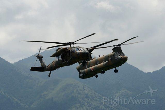 — — - UH-60JA & CH47J @ Mt,Fuji exercise area  br /JGSDF(Japan Grauund Self-Defense Force)