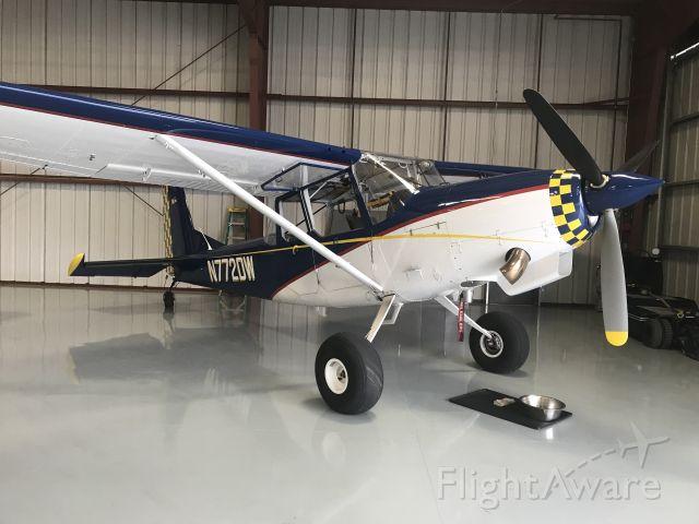 Cessna L-19 Bird Dog (N772DW)