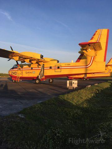 Canadair CL-41 Tutor (CC-QBA) - Gouvernement du Québec