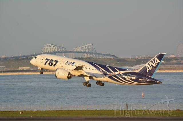 Boeing 787-8 (JA801A) - Oct.15.2016br /RWY34R