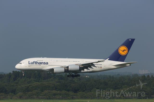 Airbus A380-800 (D-AIMH)