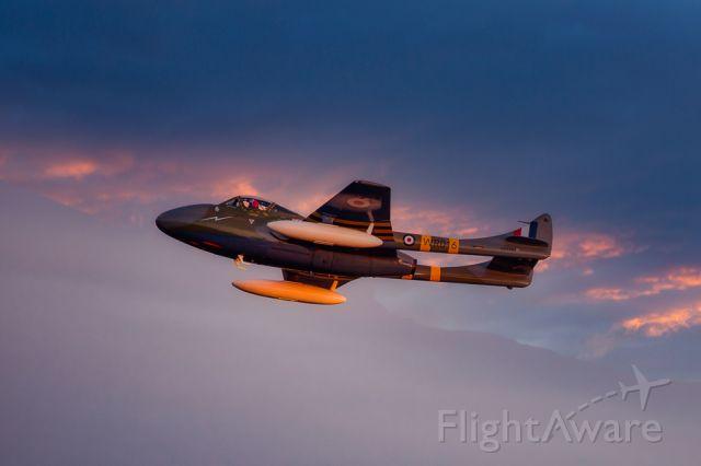 F+W EMMEN Vampire (N593RH) - Jerry Conley's beautifully prepared de Havilland DH115 Vampire.