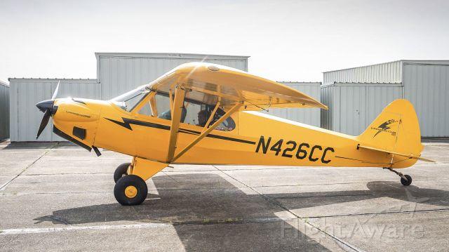 Piper L-21 Super Cub (N426CC)