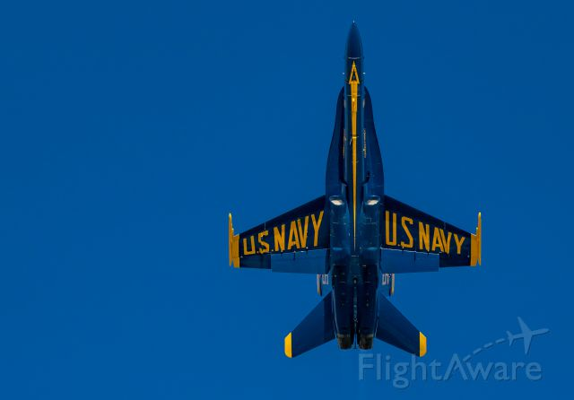 — — - Blue Angels' Solo 5 passes overhead at EAA airshow,07.29.17; Boeing F/A-18 Hornet