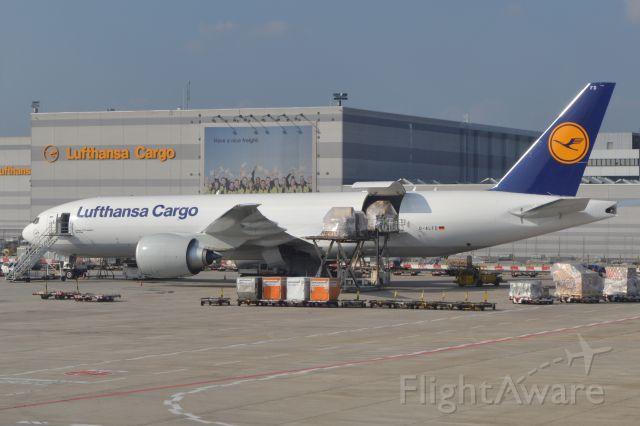 Boeing 777-200 (D-ALFD) - Lufthansa Cargo 777F parked at FRA. Taken from a Thai A380.