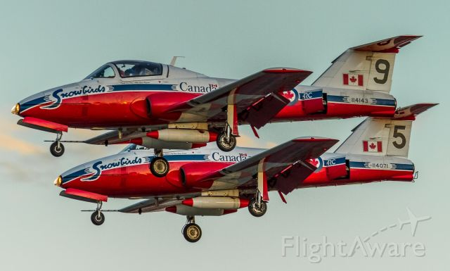 Canadair CL-41 Tutor (11-4143) - Two more Snowbirds arriving at YYZ on the eve of their flyover of the Raptors parade, waning light