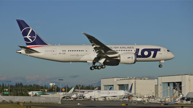 Boeing 787-8 (SP-LRD) - BOE273 on final to runway 16R to complete a flight test on 6/14/13. (LN:87 cn 35941).