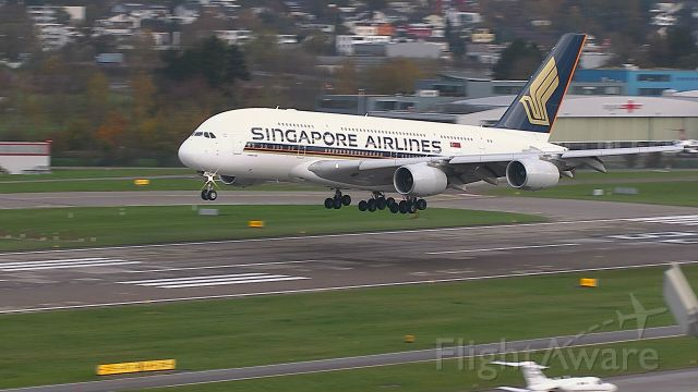 Airbus A380-800 (9V-SKR) - final approach R28 from Singapore