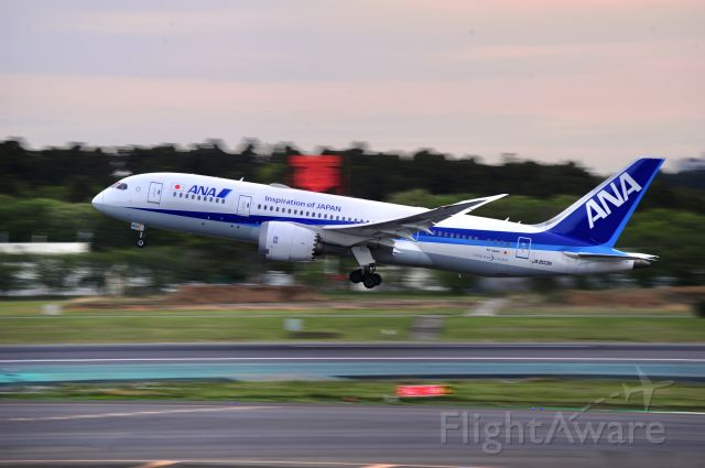 Boeing 787-8 (JA803A) - Taking off before sunset