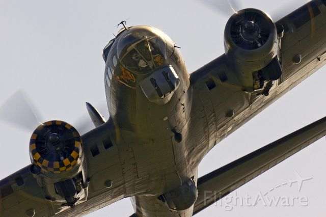 Boeing B-17 Flying Fortress (G-BEDF) - Boeing B-17G [229] Flying Fortress G-BEDF [cn.2693]. 'Sally B' and Bear mascot in close encounter at the RAFA Charity Shoreham Airport EGKA Airshow in Sussex 31.8.2013. a rel=nofollow href=http://www.flyer1dighton.co.ukwww.flyer1dighton.co.uk/a
