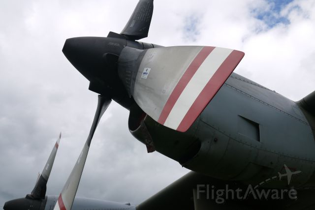 Lockheed C-130 Hercules (MVD202) - A C130 prop and engine at the RAF Museum in Cosford. (The tail number is KV202, but for some reason it got messed up when I submitted it.)