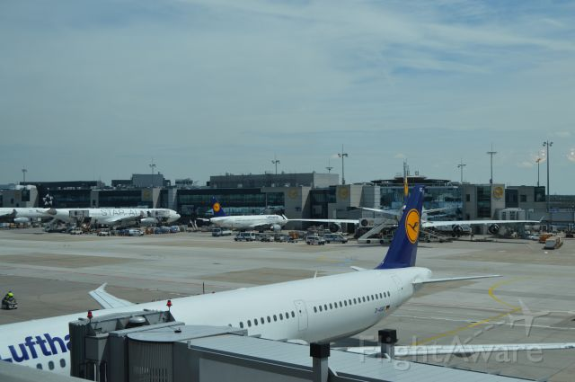 Airbus A330-300 (D-AIRC) - A330 and various other Lufthansa planes at Frankfurt.