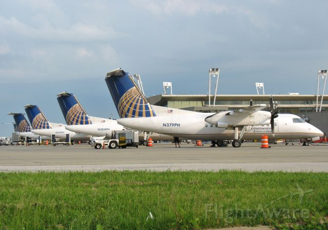 N379PH — - Continental Connection lineup of Dash 8s on the D concourse in CLE