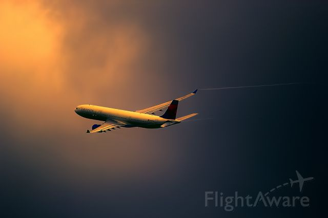 Airbus A330-300 (N804NW)