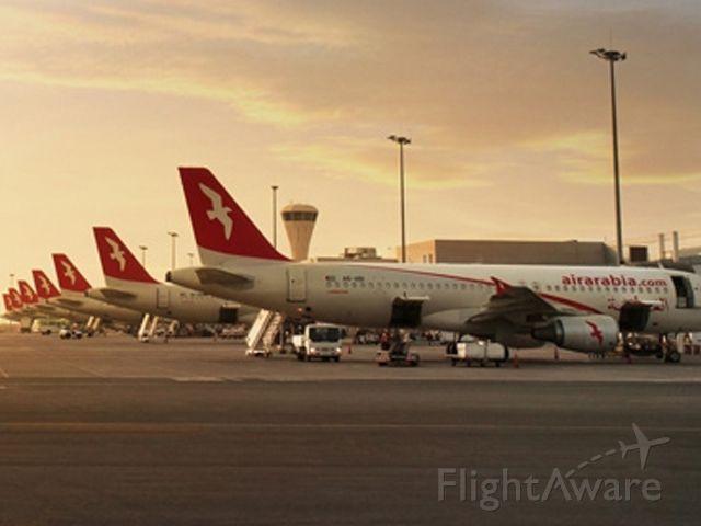 Airbus A320 (N174Y) - 3L40121/02/2021أبو ظبي (AUH)الإسكندرية (HBE)