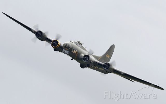 Boeing B-17 Flying Fortress (G-BEDF) - [cn.8693]. Boeing B-17G [229] Flying Fortress G-BEDF banks round for another pass at the RAFA Battle of Britain Airshow Shoreham EGKA 2.9.2012.