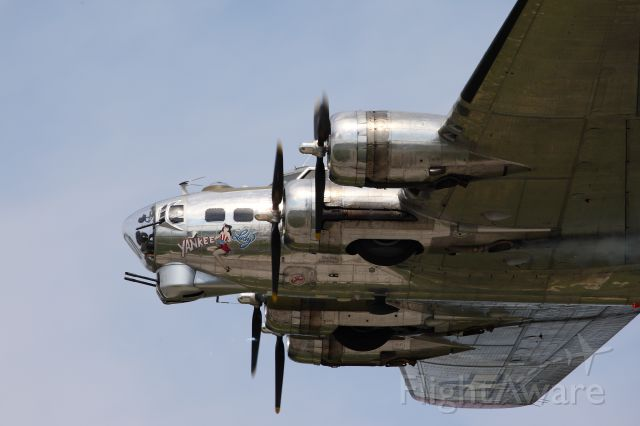 Boeing B-17 Flying Fortress — - Cleveland airshow 2014