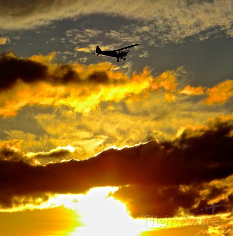 Piper NE Cub (N7272H) - Locally-based Cub departing at Reid Hilview during sunset.