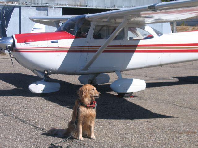 Cessna Skyhawk (N8539X)