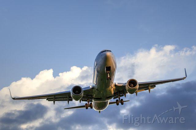 Boeing 737-800 (JA341J)