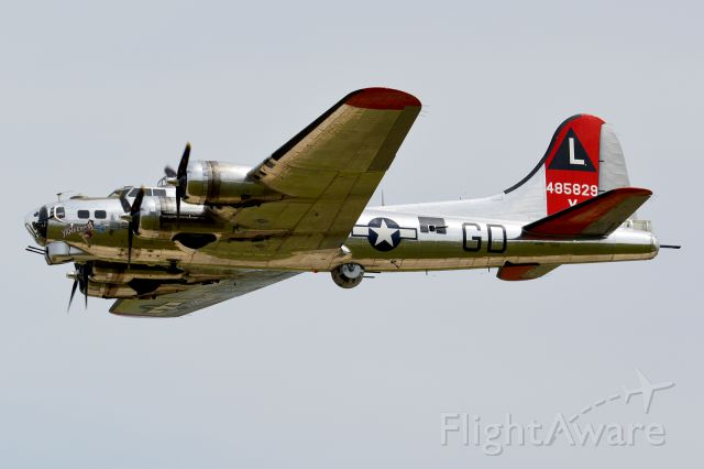 Boeing B-17 Flying Fortress (N3193G)