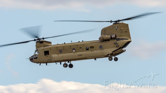 Boeing CH-47 Chinook (A15310) - Australian Army 5th Aviation Regiment Boeing CH-47F Chinook
