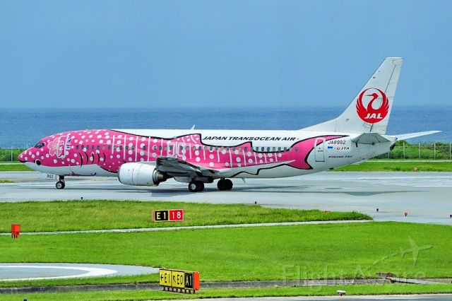 BOEING 737-400 (JA8992) - Pink Whaleshark