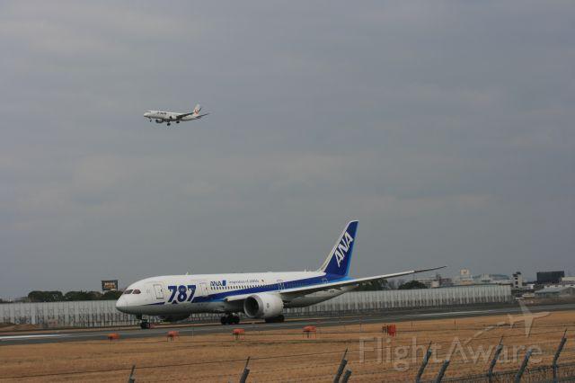 Boeing 787-8 (JA811A) - 伊丹ならではの光景ですね