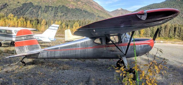 Cessna 140 (N42K) - Girdwood/Alyeska Airport tie-down yard, Girdwood AK