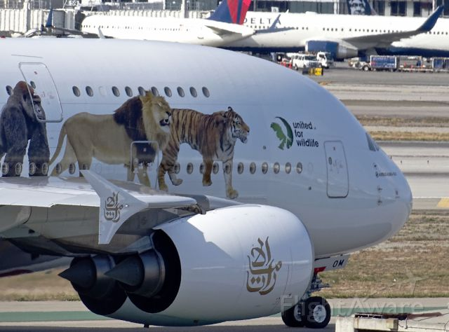 "Airbus A380-800 (A6-EOM) - <a rel=""nofollow"" href=""http://flightaware.com/live/flight/A6EOM/history/20160508/2345Z/KLAX/OMDB"">https://flightaware.com/live/flight/A6EOM/history/20160508/2345Z/KLAX/OMDB</a>"