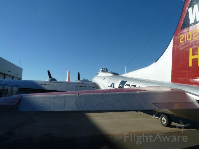 Boeing B-17 Flying Fortress (N5017N) - Aluminum Overcast 11/8/2013 KCLT - Carolina Aviation Museum