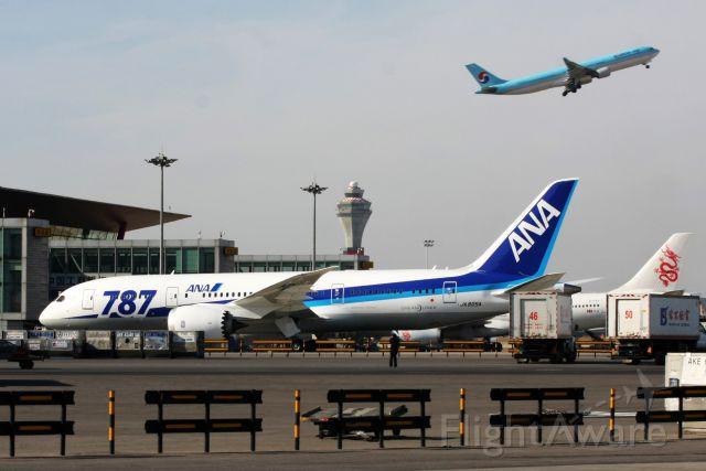 Boeing Dreamliner (Srs.8) (JA805A) - ANA Boeing 787-800 in Peking.