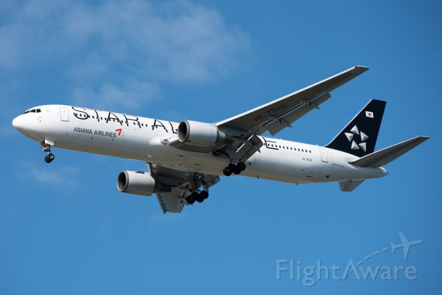 BOEING 767-300 (HL7516)