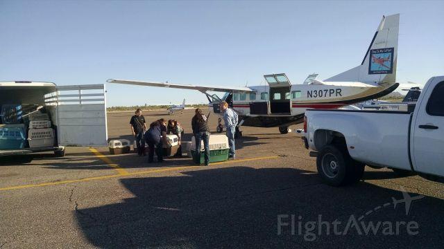 Cessna Caravan (N307PR)
