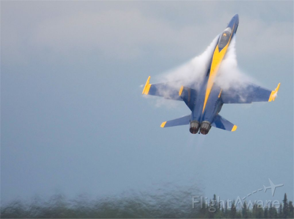 """— — - Blue Angels F/A-18 is put through its paces at the """"Arctic Thunder 2010"""" airshow at Elmendorf AFB, Anchorage, Alaska 1st August 2010"""